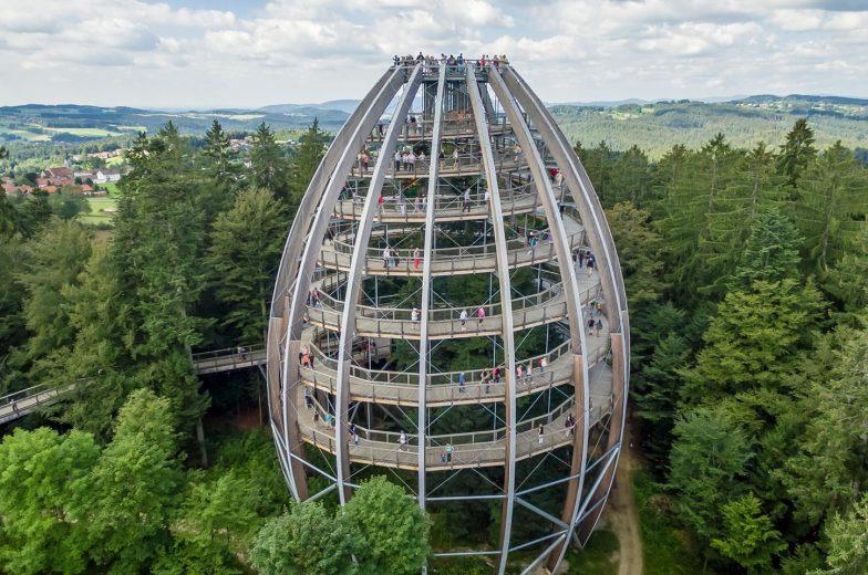 Stezka korunami stromů Neuschönau